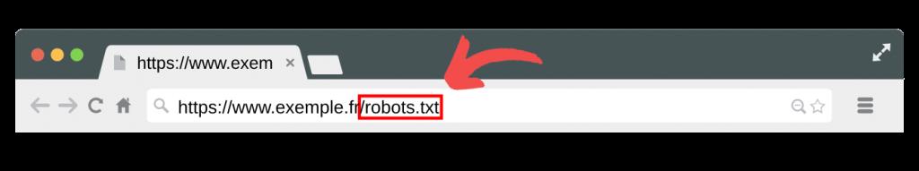 Fichier robots.txt à la racine du site web